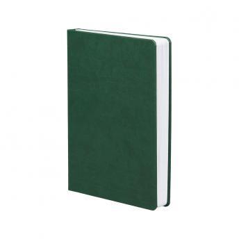 Ежедневник Basis недатированный 15 x 21 см - Зеленый FF