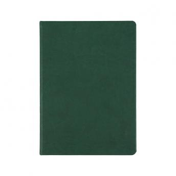 Ежедневник Basis датированный 15 x 21 см - Зеленый FF
