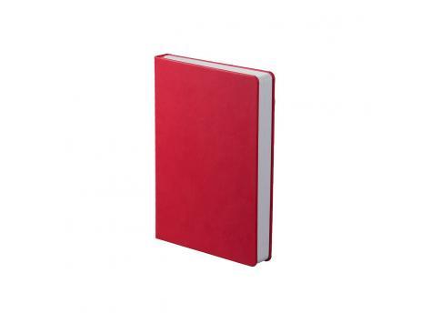 Ежедневник Basis датированный 15 x 21 см - Красный PP